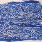 Joubert Ryan - Cyanotype