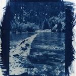 Mackenzie Bosher 2008 - cyanotype