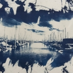 Maddie Rowe Cyanotype