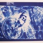 NAgel Ariana - Cyanotype