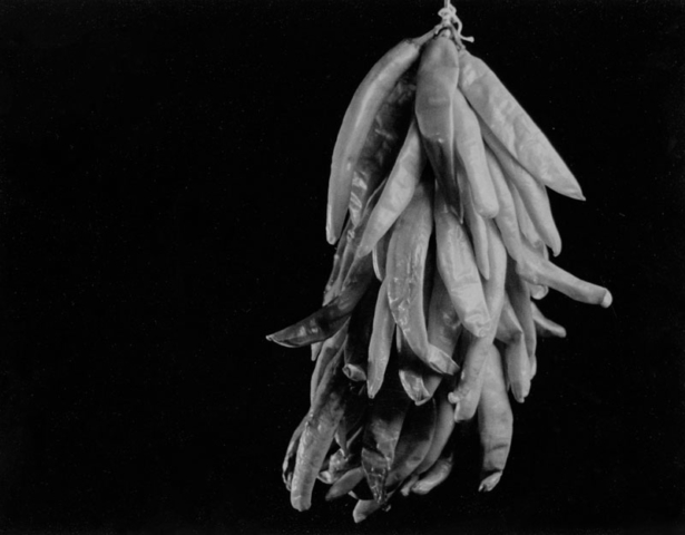 2012-District-Show-Honorable-Mention-Darkroom-Photo-Hanna-Crea